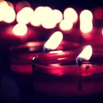 1000 tea candels