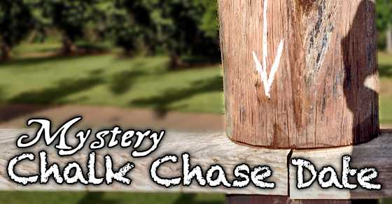 Mystery chalk chase date